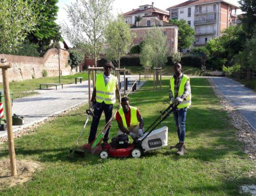 Chieri vince il Premio 'la Città per il verde 2017'