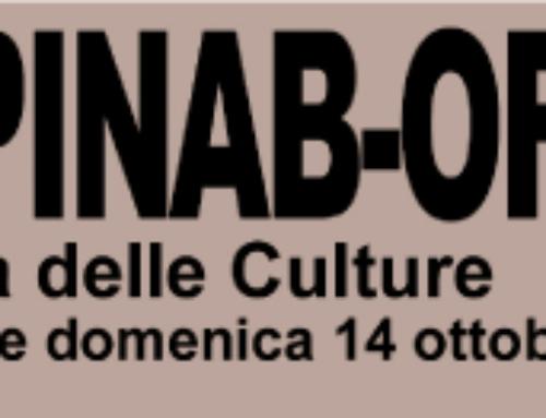"""Un grande successo la prima edizione di """"Ciapinab-OFF: La Festa delle Culture""""!"""