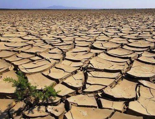 Ipcc: il cambiamento del clima aumenterà fame e migrazioni