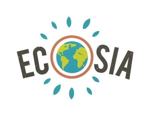 Ecosia è quella piccola cosa che tutti noi dovremmo usare.