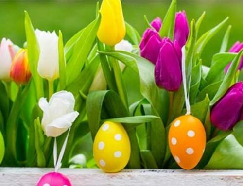 Buona Pasqua da parte di tutti noi!