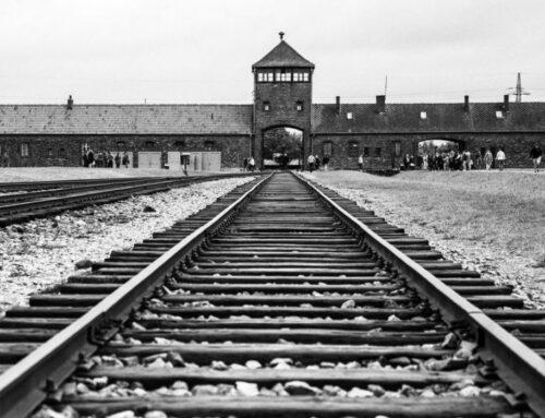 """Liliana Segre: """"Oggi con i migranti, come ieri con gli ebrei, è tragica l'indifferenza"""""""