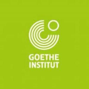 goethe ins